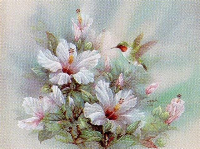 Гибискус и колибри, цветы,
