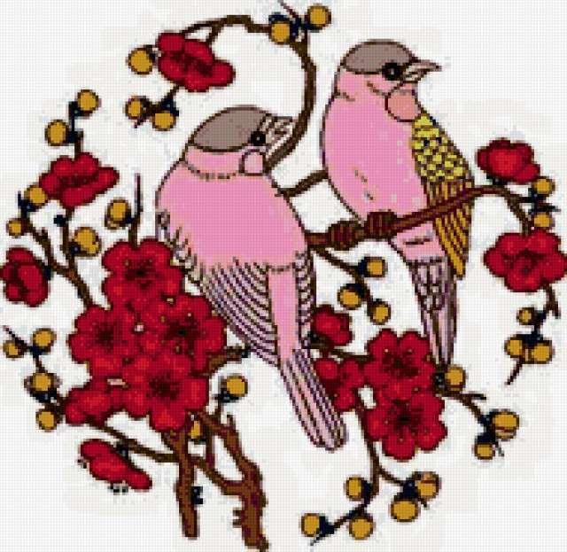 Китайские птицы, предпросмотр