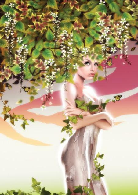 Берёза, девушка, дерево