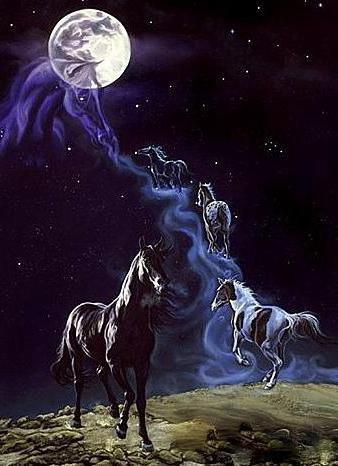 Табун, лошади, кони, луна,