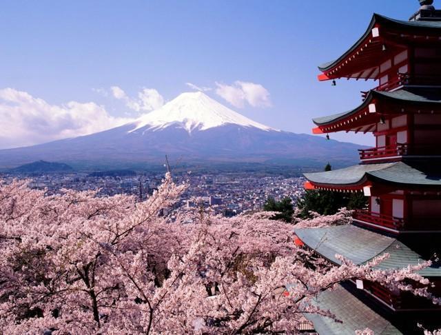 Сакура, пагода, Фудзияма