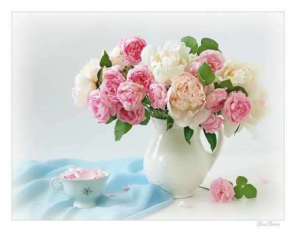 Нежные пионы, цветы, букет, пионы ...: www.xrest.ru/original/Нежные пионы-221629