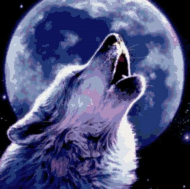 Одинокая волчица, предпросмотр
