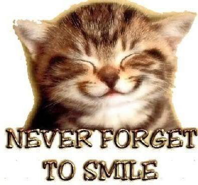 Never Forget To Smile, животны