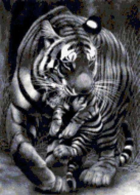 Тигрица и тигрёнок, тигр,