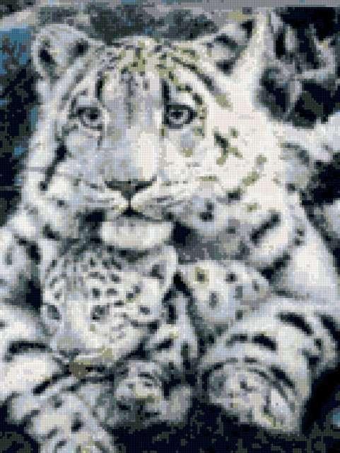 Белые тигры,