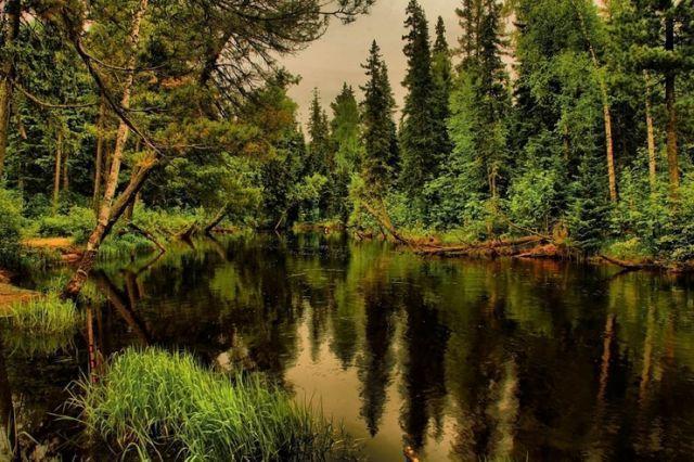 Красивый пейзаж,