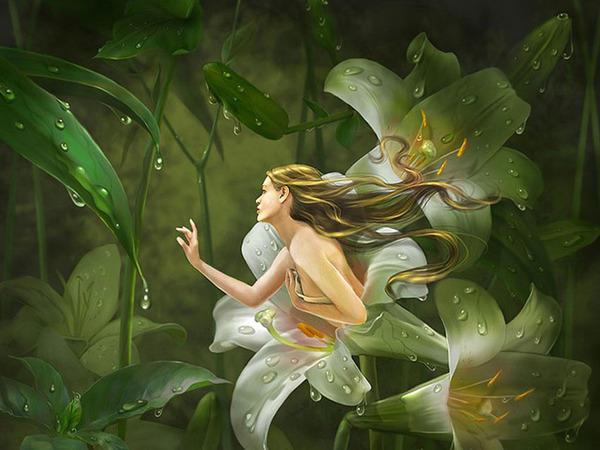 девушка цветок фото
