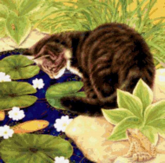 ПОдушка, кот, подушка