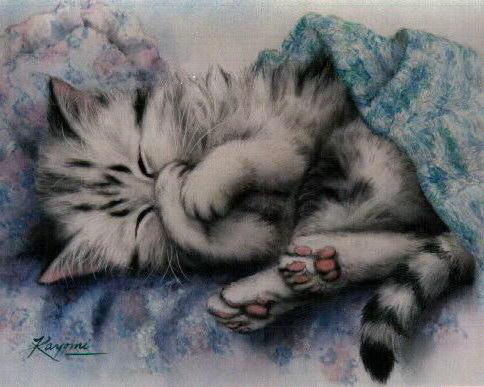 Сладких снов!, котята, котенок
