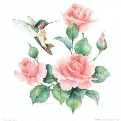 Розы и колибри, цветок, роза,