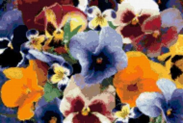 Цветочный ковер, предпросмотр