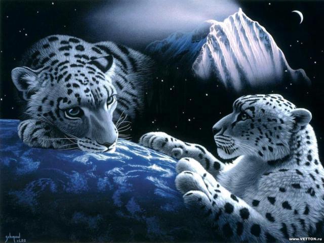 Большие кошки, Животные и