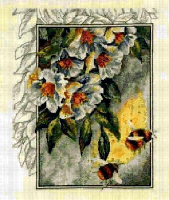 Пчелки в саду, ветка липы,