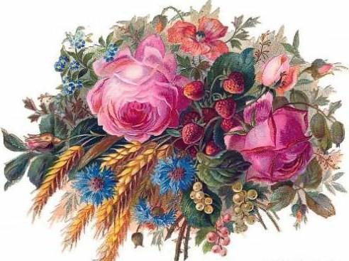 Колосья, цветы .букет