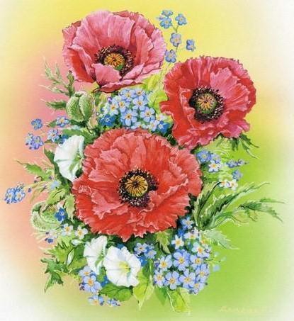 Крупные маки, цветы .букет