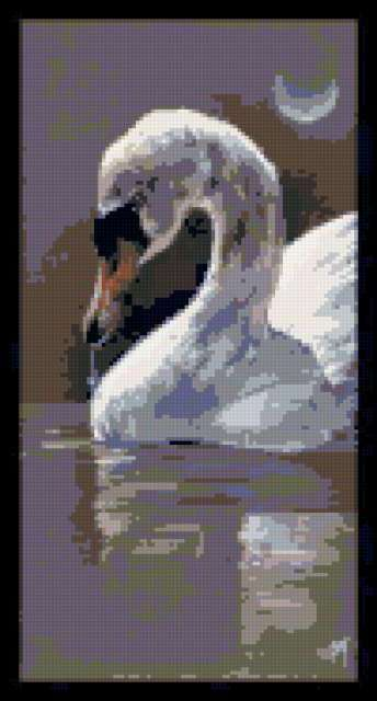 К схеме вышивки «Белый лебедь