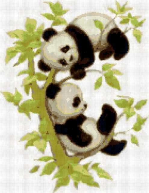 Две панды, предпросмотр