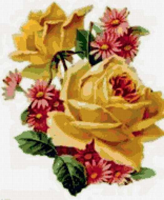 Розы и маргаритки, цветы .