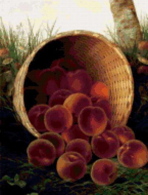 Корзина персиков, персики