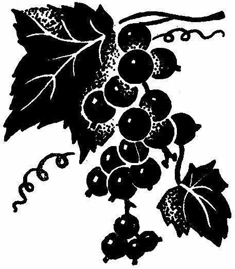 Смородина, смородина, ягоды