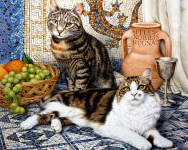 Семейство кошачьих, оригинал