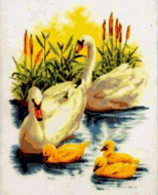 Лебединая семья, предпросмотр