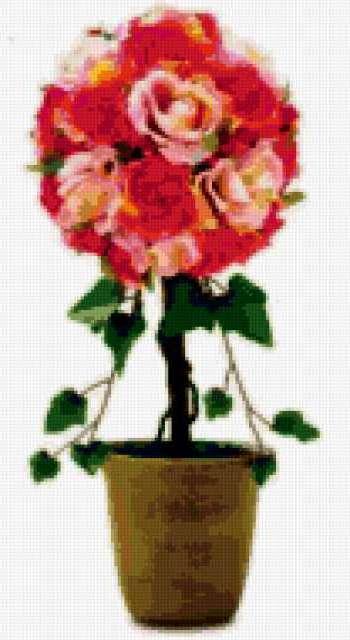 Розы в горшке., розы, дерево,