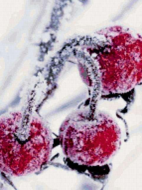Вишенки в снегу, предпросмотр