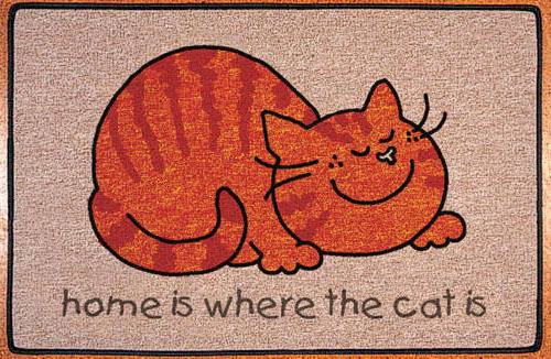 Home is where the cat is,