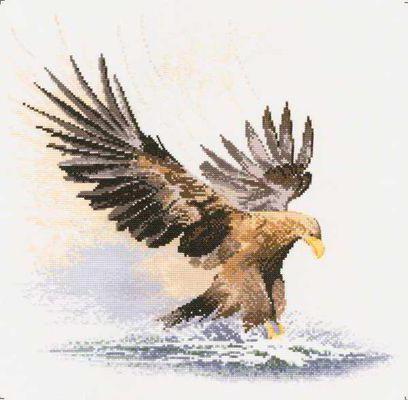 К схеме вышивки «Орел» нет