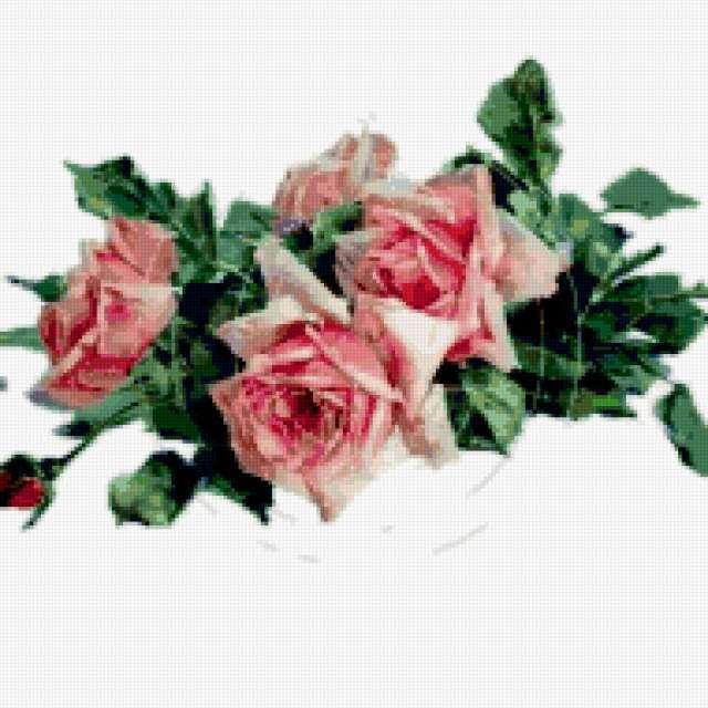 Розы в росе, предпросмотр