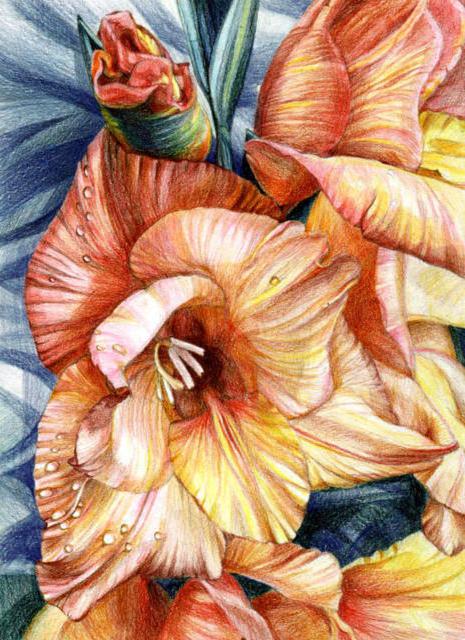 Цветы(невероятно четкая схема)