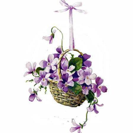 Фиалки в корзинке, цветок,
