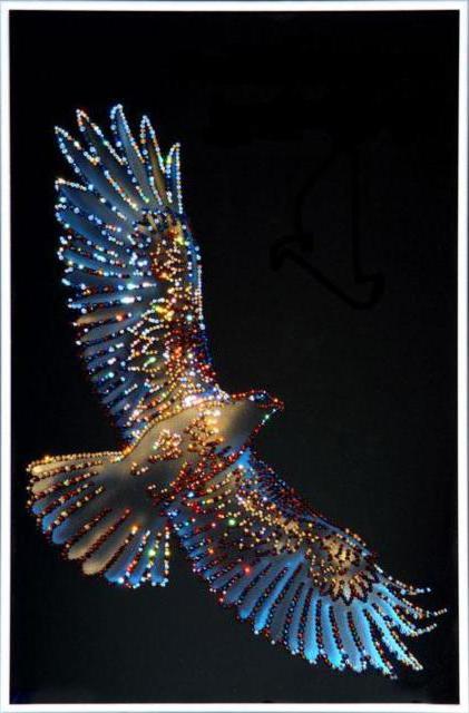 Крылья свободы, оригинал