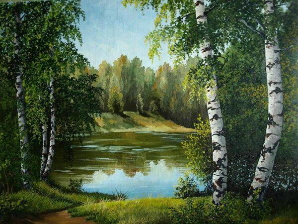 Березы, пейзаж, природа