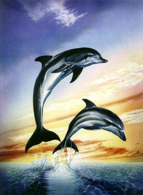 Схема вышивки «Дельфины в