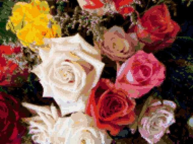 Ковер из разноцветных роз,