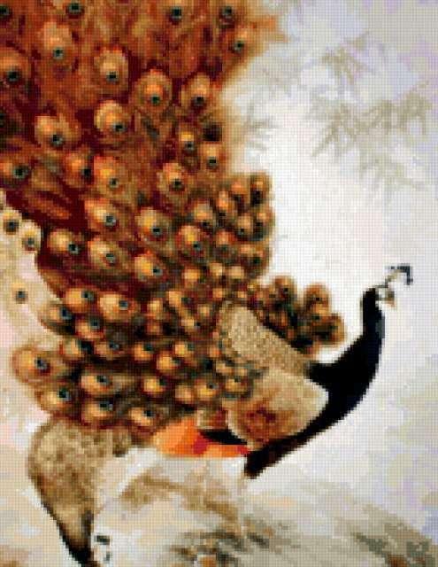 Волшебная птица - павлин