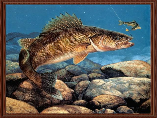 Рыбалка, оригинал