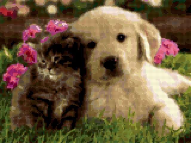Друзі назавжди, тварини