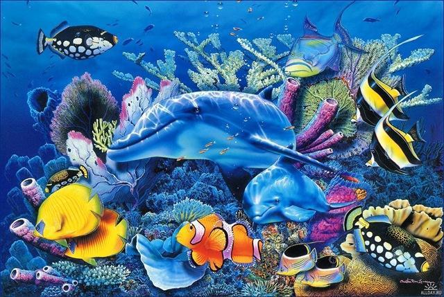 Морское дно, картинка
