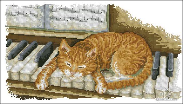 Котик на пианино, пианино,