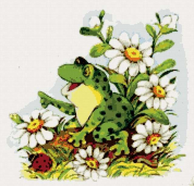 Лягушка квакушка, предпросмотр