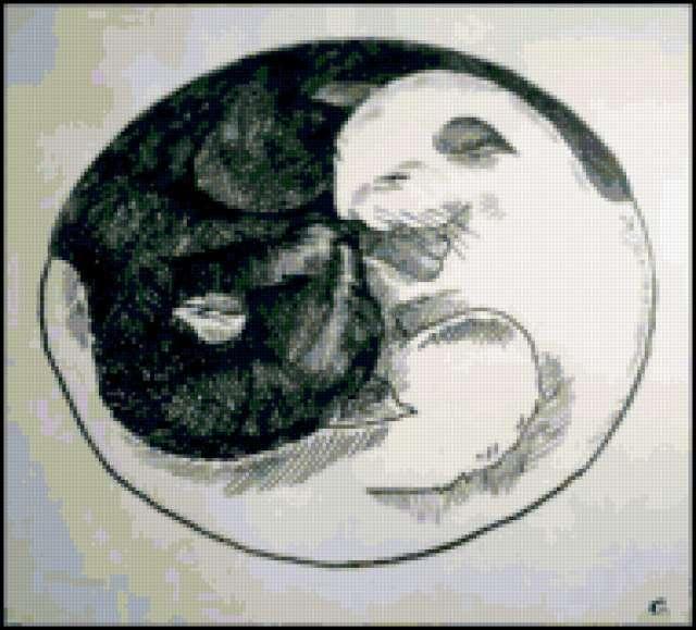 Инь-Ян коты, предпросмотр