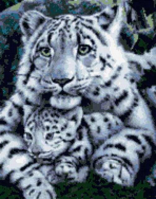 ЛЕопард и детёныш