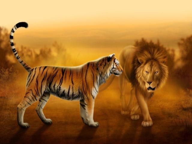 Тигр и лев, оригинал