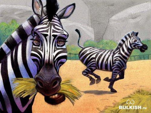 Зебры!, зебры, лошадки