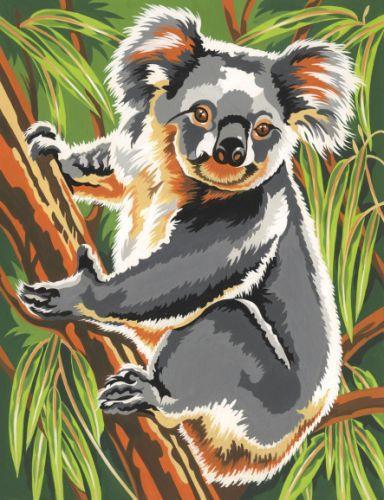 Коала, коала