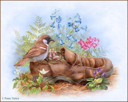 Необычное гнездо, птичка